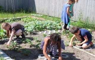 kids OASE Gartenprojekt